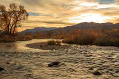 Fall color by a flowing stream in the Utah mountains. Royalty Free Stock Image