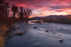Fall color by a flowing stream in the Utah mountains. Royalty Free Stock Photography