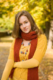 Fall color harmony. Stock Photos