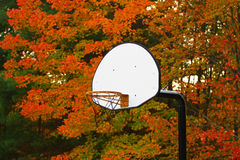 Fall Color and Hoop Royalty Free Stock Images