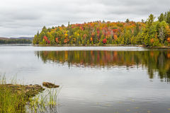 Fall Color on a Lake in Algonquin Provincial Park, Ontario, Canada. Lake in Autumn with Colorful Sugar Maples Lining the Shore - Algonquin Provincial Park stock images