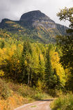 Fall Color Many Glacier National Park Montana Trail Forest Road Royalty Free Stock Photos