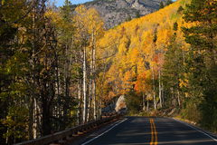Fall Color on a Mountain Road Royalty Free Stock Image