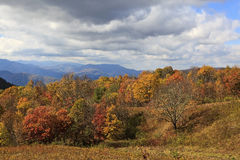 Fall Color in the Mountains royalty free stock photography