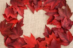 Fall color. Red fall leaves on a tan linen background Stock Photo