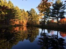 Fall color. Reflected in the water Royalty Free Stock Image