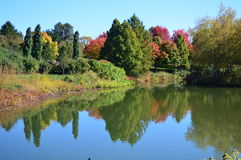 Fall color reflection on water Stock Photography
