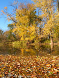 Fall Color Reflections. Beautiful fall colors reflect off the Kishwaukee River in Boone County, Illinois Royalty Free Stock Image