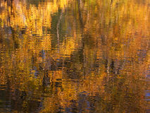 Fall Color Reflections. Beautiful fall colors reflect off the Kishwaukee River in Boone County, Illinois Stock Images