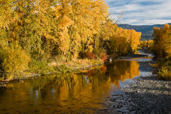 Fall color reflections. Fall colors in foliage reflected in Teanaway River near Cle Elum, Washington, USA. Fall season comes to Cascade Mountains in Washington Stock Photo