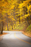 Fall color road. Road go through fall color Royalty Free Stock Photo
