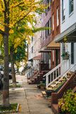 Fall color and row houses in Remington, Baltimore, Maryland.  royalty free stock images