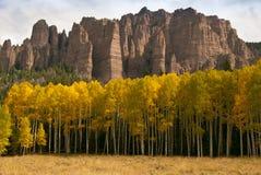 Fall Color in The San Juan Mountains of Colorado Royalty Free Stock Photos