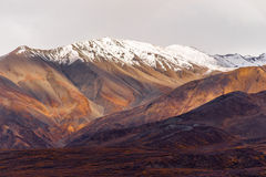 Fall Color Snow Capped Peak Alaska Range Fall Autumn Season Royalty Free Stock Photography