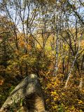 Fall color. Stone rock love fall lovely fun hiking trees sky colorful color Royalty Free Stock Photo