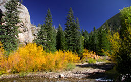 Fall in Colorado Stock Images