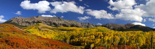 Fall in Colorado Royalty Free Stock Photo