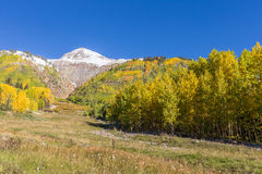 Fall in Colorado Royalty Free Stock Images