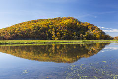 Fall Colored Hill Royalty Free Stock Photos