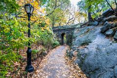 Central Park in November. Fall colorful foliage in Central Park, New York, NY Stock Images