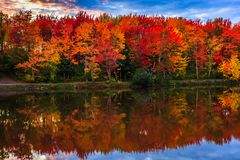 Fall colorful in New Brunswick, Canada stock photos
