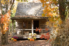 Fall colors. An old cabin in the woods with fall colors Stock Images