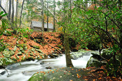 Fall Colors. And a slow moving creek with a cabin in the background Royalty Free Stock Images