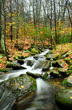 Fall Colors. With slow moving stream with boulders Royalty Free Stock Photo