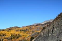 Fall Colors. In the Talkeetna Mountains, Alaska stock photography