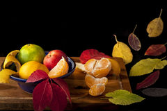 Fall colors. Arrangement of autumn leaves and fruits on the wooden surface against black background Stock Images