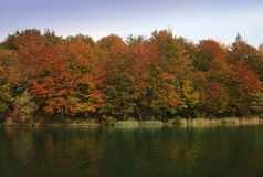 Fall colors. Lake and colorful trees stock image