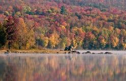 Fall colors. On Adirondacks lake Royalty Free Stock Image