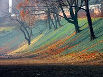 Fall colors. Slope in fall colors Stock Image