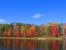 Fall Colors. Lakeside fall forest in Ontario, Canada stock photos