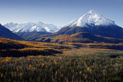 Fall Colors in Alaska stock photos