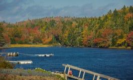 Fall Colors Along the Coast of Nova Scotia. Canada royalty free stock images