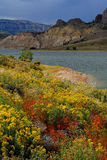 Fall colors along Gunnison River Stock Image