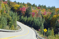 Fall Colors Along Highway 35 Ontario. Beautiful view of colorful trees along the highway stock photos