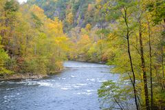 Fall colors along a lazy river in the Smokies. A lazy river in fall surrounded with fall colors stock photo