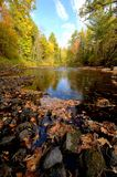 Fall Colors Along the Pine River Royalty Free Stock Images