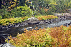 Fall colors along river Royalty Free Stock Photography