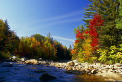 Fall Colors Along The River