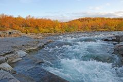 Fall colors along riverbank Stock Photography