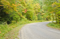 Fall Colors Along the Road. Beautiful view of colorful trees along the road stock images