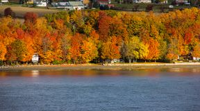Fall Colors Along the Saint Lawrence River. Fall colors along the banks of the Saint Lawrence River near Quebec City, Canada royalty free stock image