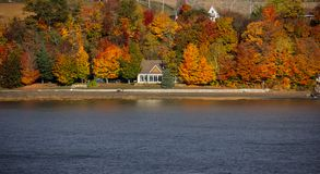 Fall Colors Along the St. Lawrence River. Fall colors along the shore of the St. Lawrence River, Canada royalty free stock image