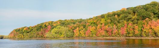 Fall Colors Along the St. Croix River. Panoramic View of Fall Colors Along the St. Croix River near Stillwater, Minnesota Stock Photography