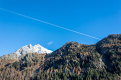 The fall colors of the Alps near Gressoney Stock Image