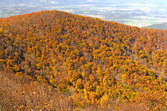 Fall Colors on an Appalachian Ridge Stock Photo