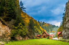 Fall colors around a cottage house. Royalty Free Stock Photos